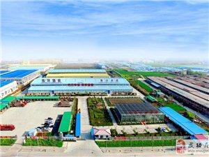 杨陵区钢构厂房租赁