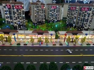 预售仁寿新主城区交界 城市规划中心买到绝对升值!!