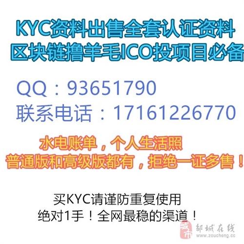 国外KYC资料出售全套认证资料区块链撸羊毛ICO投