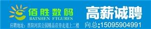 重庆佰胜数码科技有限公司酉阳分公司