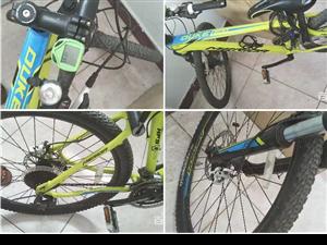 美利达,骚绿山地自行车,公爵600。