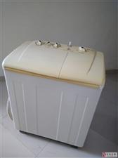 半自动波轮洗衣机8公斤带脱水甩干机