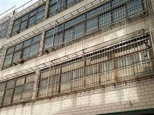 东关自建5层整体出租电力大厦北150米新颖路东