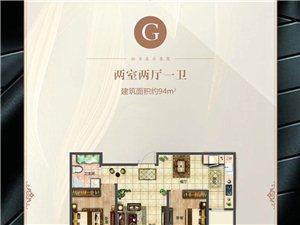 G户型 两室两厅一卫 94�O