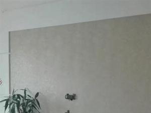 平章府2室2厅90平精装电梯房家具家电齐全