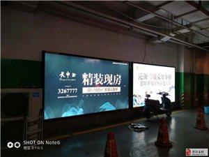 社区媒体运营专家—河南蓝色畅想文化传播有限公司