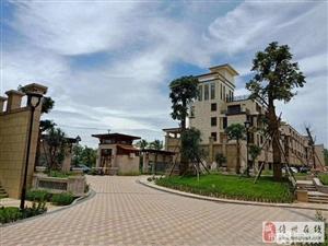 儋州市别墅世家联排别墅均价1.3万平米户型任选