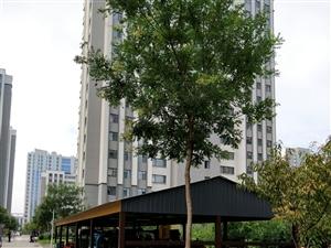 清华家园8楼98平精装带储藏室紧邻三小学校