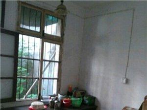 二中老大门对面4室1厅1卫500元/月