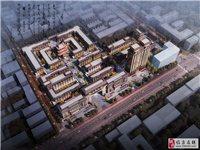 丽丰•城隍庙