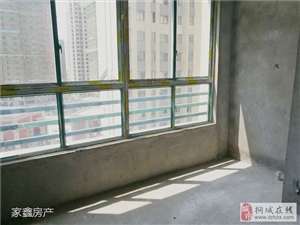 维也纳国际城电梯三居室地下车库一起卖随时看房