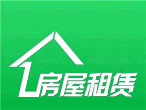 江滨二期,6楼,3房1厅1卫1厨1阳台,新装修
