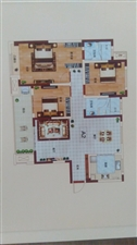 亚新橄榄城3室2厅2卫67万元