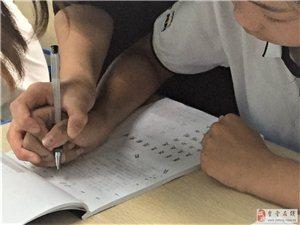 金堂學書法,硬筆毛筆書法,價格合理,老師負責的學校