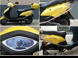 国三大阳跑跑摩托车出售,发票合格证都有
