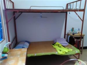 双层铁床低价出让,有床板