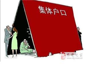沒有房產可以入戶台湾嗎什麼是集體戶