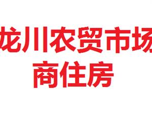 龙川农贸市场内500元/月