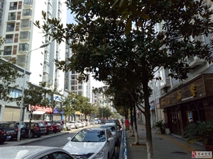 政府广场附近门面出售53.8万元