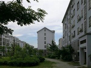 新光小区1期3室2厅2卫129平米91.8万南北通