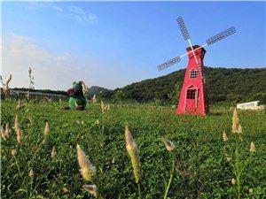 武漢周邊秋游農家樂的好地方?秋季企業團建的好去處?