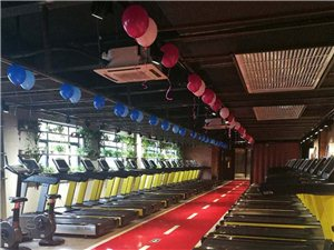 遷安賽奧健身 超大運動空間 多種訓練器材 優質體驗