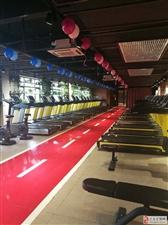 迁安赛奥健身 超大运动空间 多种训练器材 优质体验