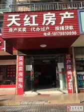 鸿宇天湖城带大露台九小对面学区房精装修