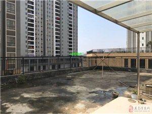 阳光龙苑电梯2房带130平大露台1800元/月出租