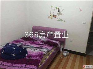 1室1卫291元/月