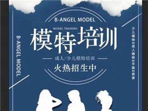 B-angel模特公司成人/少儿模特班招生