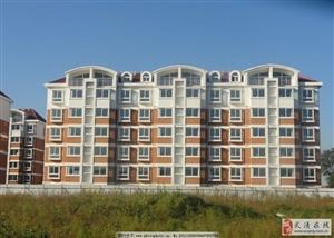 武清运河东;城区中心位置2室2厅1卫86万元