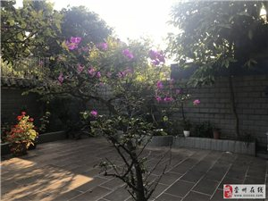 锦绣中华稀有带花园60平方全装家具家电超低税费随看