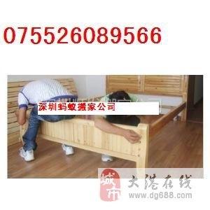 深圳宝安新安搬家公司蚂蚁老牌值得信赖