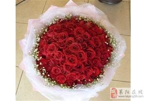 海诺鲜花18300545915