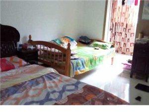 东大公寓2楼中装1室1厅1卫52平43万元