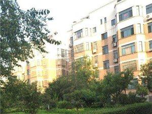 南燕都小区3楼95平带储藏室精装可按揭75万元