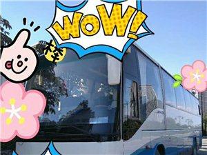 青州市舒适豪华旅游大巴(19座-55座)租赁包车