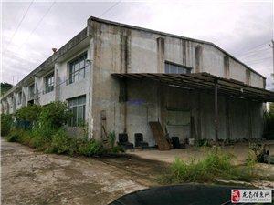 金塘工业园21780平米厂房90000元/月