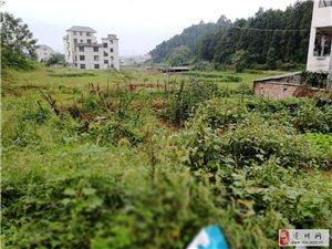 超面積大土地,國有出讓,有批示。