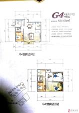 康安江城房东急卖低于市场户型方正49.8万