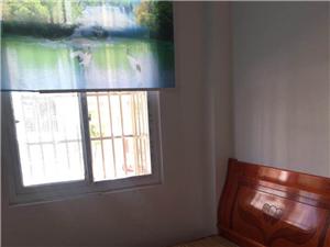 金河小区2室2厅1卫916元/月