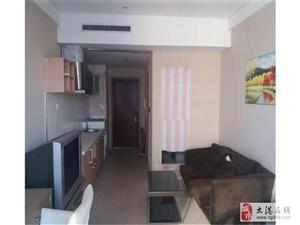 时代奥城酒店式公寓精装一室新出房源交通便利随时看房,干净