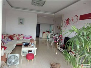 B965中央欣城8楼2室2厅1卫全装