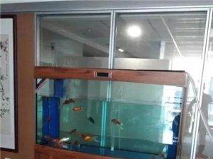 訂做魚缸清洗維修水族箱