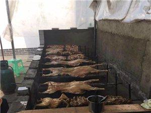 特色烤全羊、烤排骨、烤全鸡等