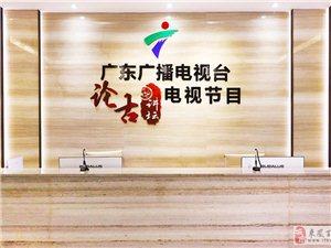 艺术品+金融化:广东广播电视台论古讲坛让艺术品活起来