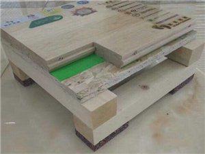 歐氏運動木地板,體育木地板銷售安裝