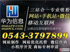 滨州华为信息专业网站建设、网站推广