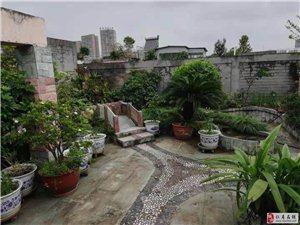 街心花园建设小区精装全带房东诚心出售屋顶带花园